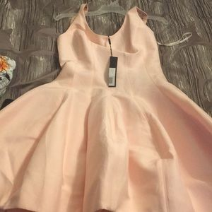 Halston Heritgae Dusty Pink Bubble Dress